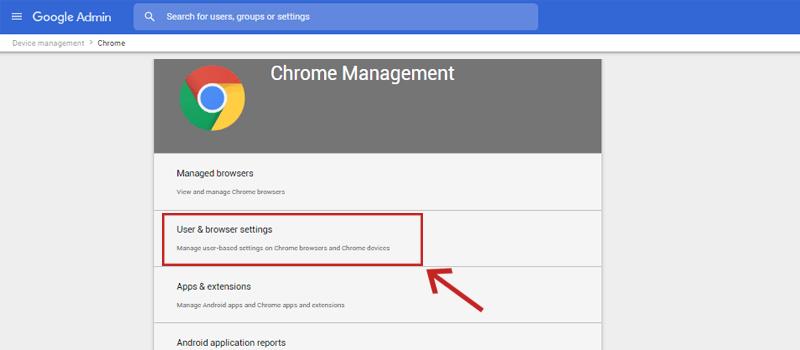 User & browser settings